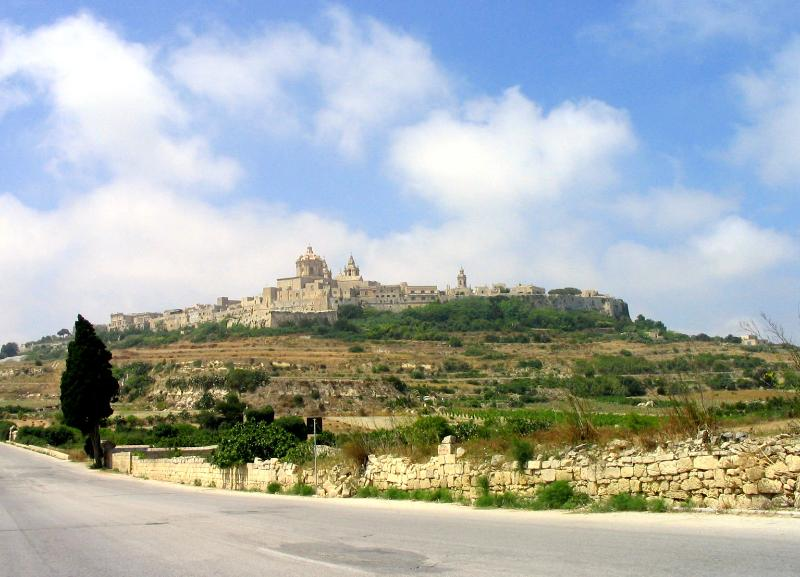 Mdina (old capital) can be seen from roof - Farmhouse in  Malta near the famous Mosta Dome - Mosta - rentals