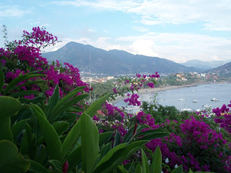 peaceful, yet close to town... - Casa Bugambilia I- penthouse - Zihuatanejo - rentals