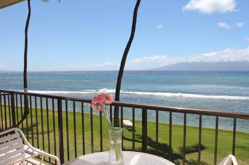 Papakea F205 - Oceanfront and Remodeled Condo. $150/nt May Special - Image 1 - Lahaina - rentals