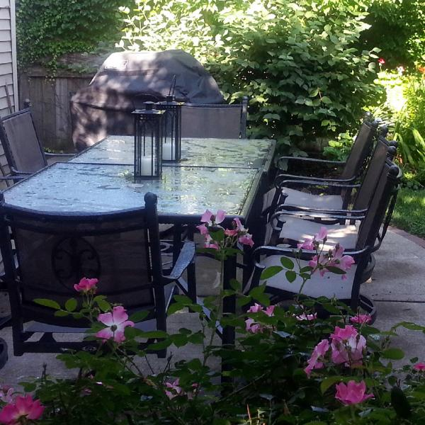 Beautiful Private Garden / Outdoor Dining - Teri's Chicago Guest House on Newport Avenue - Chicago - rentals