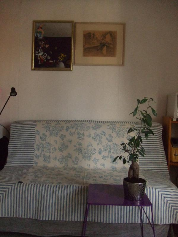 Living room - Cute and comfortable, fully furnished Paris aptm! - Paris - rentals