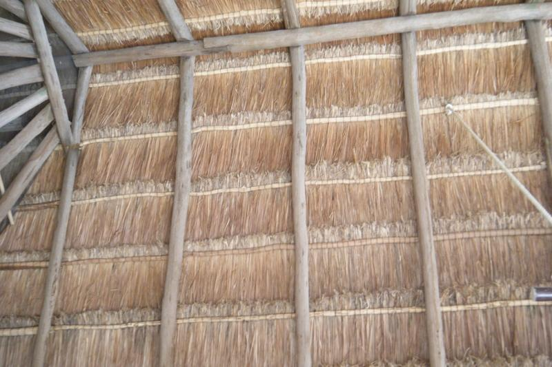 palapas roof - New renting beach front cottage - Tulum - rentals