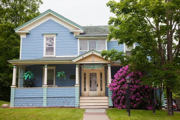 Catskill Victorian with fireplace & hot tub - Catskill Victorian Fireplaces/ Hot Tub sleeps 12 - Margaretville - rentals
