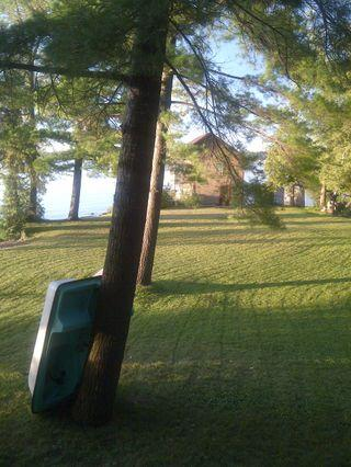 Front yard looking to boathouse - Your home, park and beach all yours - right there! - Fenelon Falls - rentals