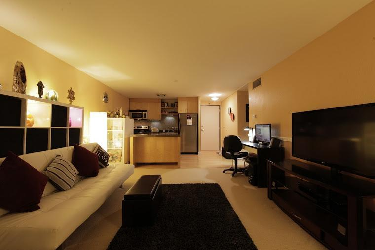 Downtown on the Light Rail, Waterfront and Parks - Image 1 - Portland - rentals