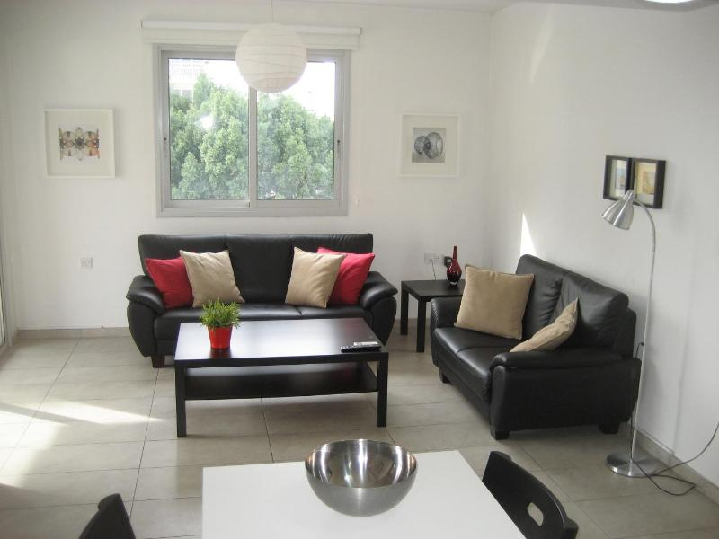 Amazing new central flat at a cheap price - Image 1 - Nicosia - rentals
