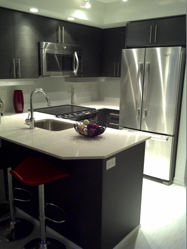 Gorgeous 2 Bed Condo On King West - Image 1 - Toronto - rentals