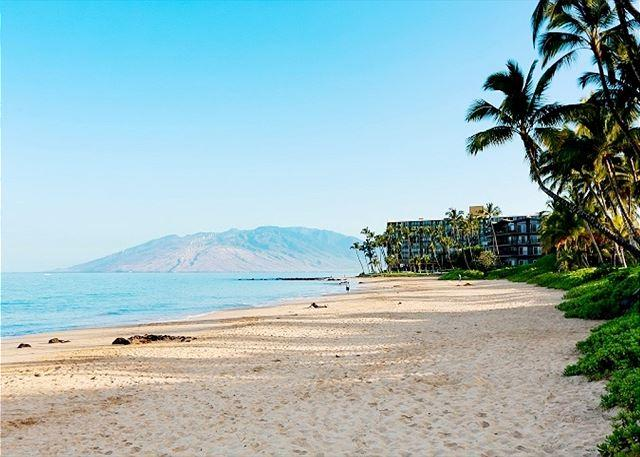 Keawakapu Beach a short stroll from the Palms at Wailea - Palms at Wailea #307 Remodeled and Beautifully Furnished 1 Bd 2 Ba Sleeps 4! - Wailea - rentals