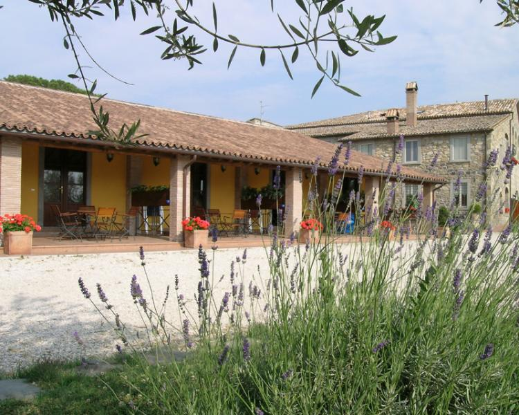 holiday apartment in agritourism Bolsena Lake - Image 1 - Bolsena - rentals