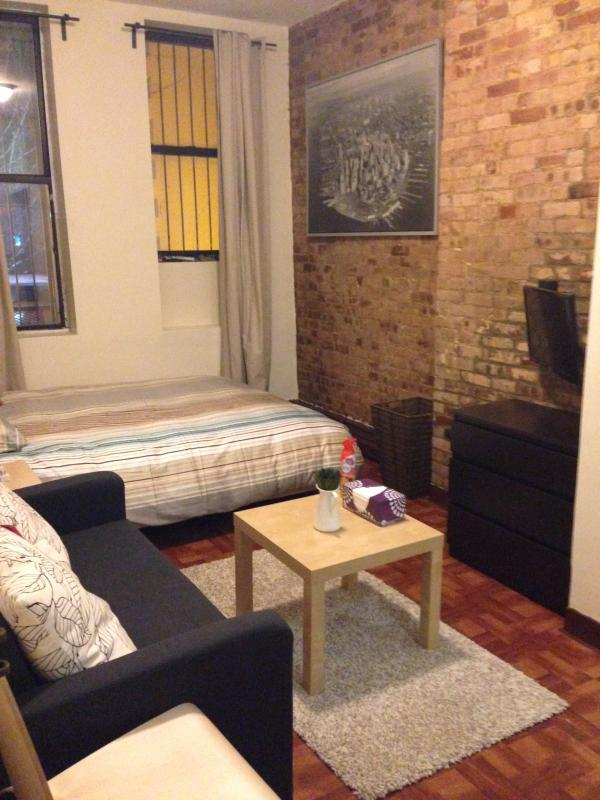 The Perfect Studio in UES! - Image 1 - Manhattan - rentals