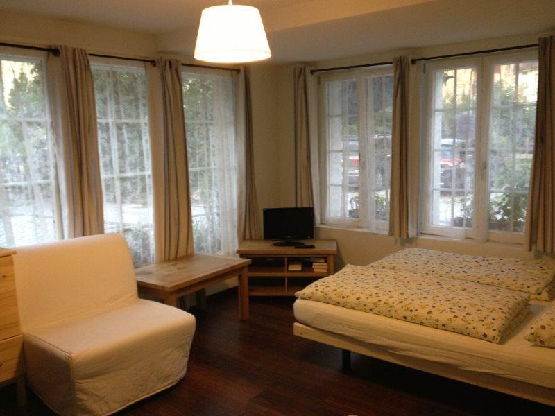 The Studio room - Studio Apartment in CityChalet historic - Interlaken - rentals