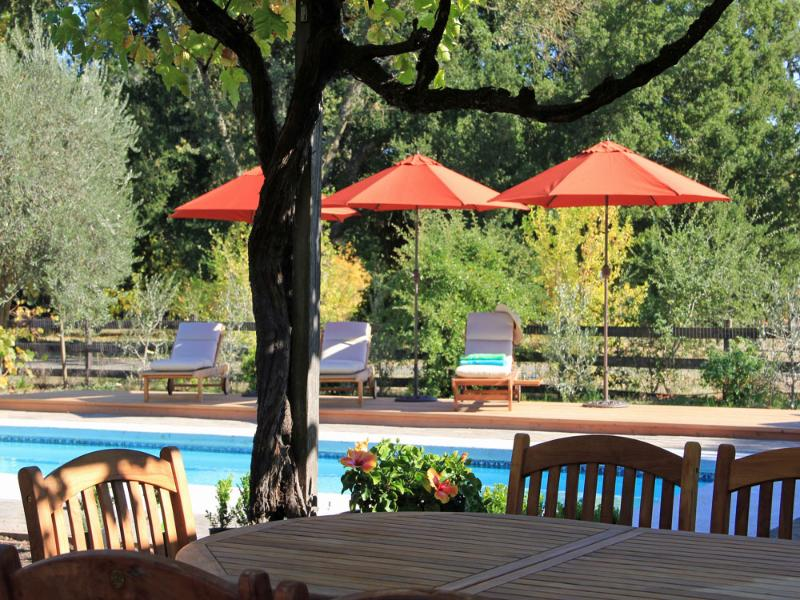 Relax with family and friends under grape arbor or expansive decks around  - Villa Ticino - Romantic and Exclusive Vineyard Estate - Kenwood - rentals