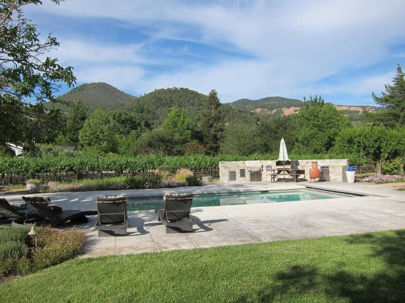 Enjoy the view relaxing by the pool and spa - Vina Vista - Kenwood - rentals