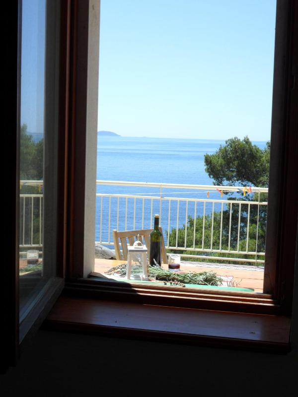 SMILJE apartment on the coast, Villa Ius, Gršćica, Korčula - Image 1 - Blato - rentals