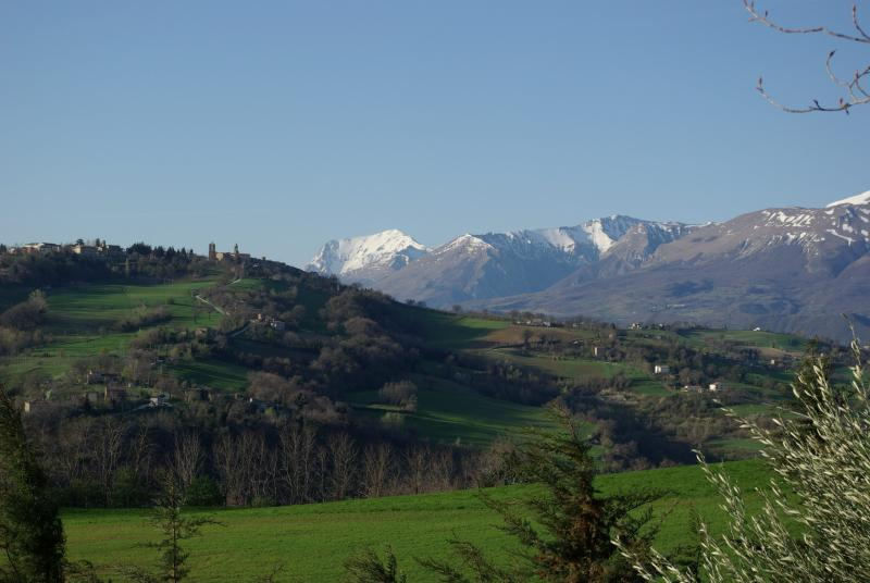 view from the garden towards the mountains - Modern spacious villa with large secure gardens - San Ginesio - rentals