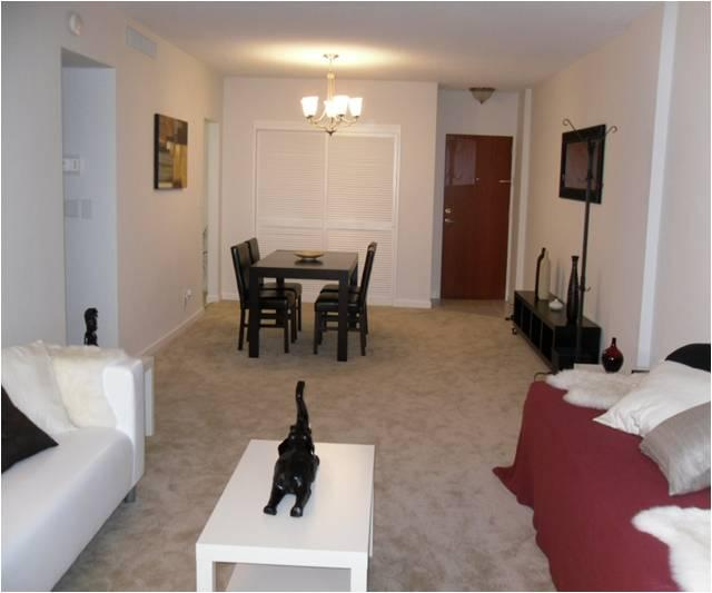 Excellent apartment w/ ocean view! - Image 1 - Hollywood - rentals