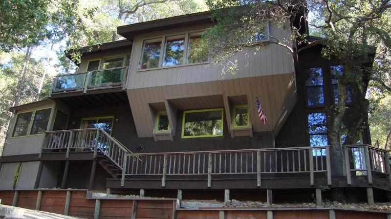 Street View - House in the Trees - Kelseyville - rentals