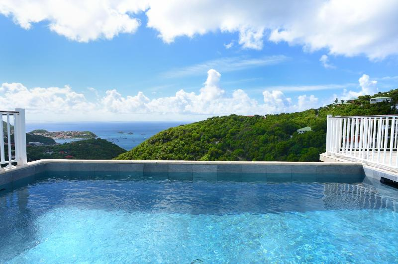 2 Bedroom Villa with Infinity Pool Overlooking the Ocean in Colombier - Image 1 - Anse des Flamands - rentals