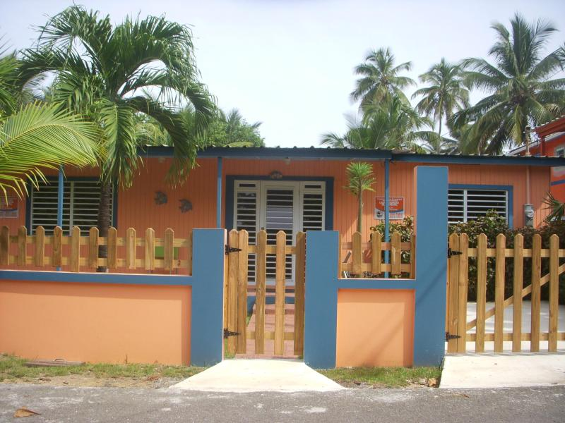 Casa Las Mareas - 45 seconds from the beach - Image 1 - Rincon - rentals