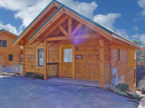 ERN845 - EAGLE WATCH - Image 1 - Pigeon Forge - rentals