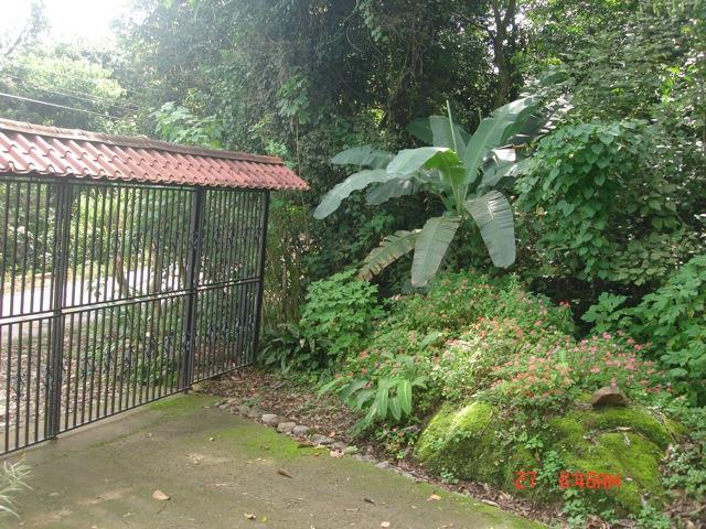 Gated Entry to property - Pura Vida, Costa Rica Getaway in San Isidro - San Isidro de El General - rentals