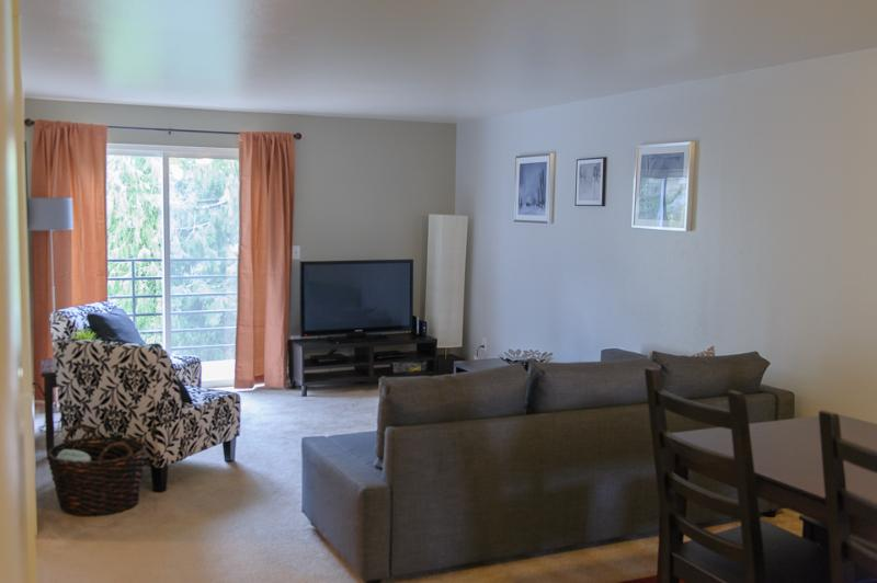 Spacious Living Room with Sofa Sleeper - Plaza Suites 3 Bedroom Condo - Seattle - rentals