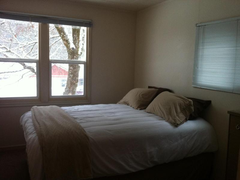 Grizzly Canyon Suite (Upstairs) - Image 1 - Revelstoke - rentals