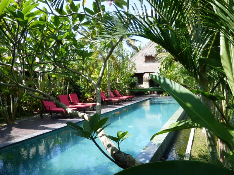 Our wonderful infinity pool overlooking the rice fields - Bali Harmony Luxury Million$Ricefield Views from $167! - Ubud - rentals