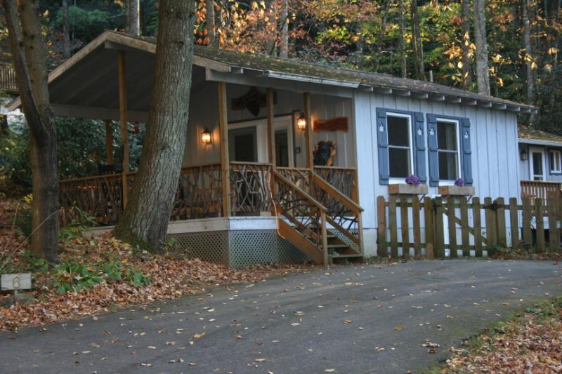 Coming up on Babbling Brook Cottage - On Babbling Brook - WiFi - Fenced - Gas Fireplace - Brevard - rentals