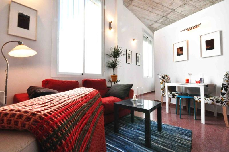 VIEW FROM THE ENTRANCE - THE ARTIST LOFT - Malaga - rentals