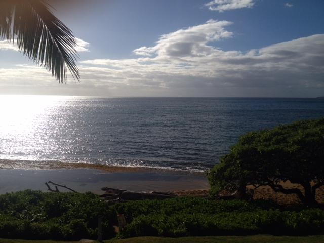Yes, this is your private view - KAPAA SANDS DIRECT OCEAN FRONT - Kapaa - rentals
