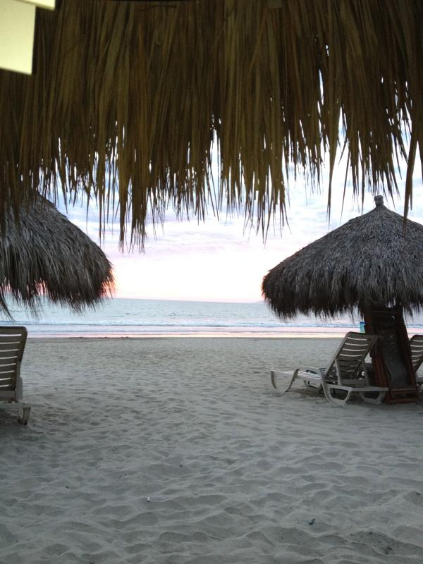 Playa Royale Located in one of the most beautiful and prestigious sandy beaches of Destination - Image 1 - Nuevo Vallarta - rentals