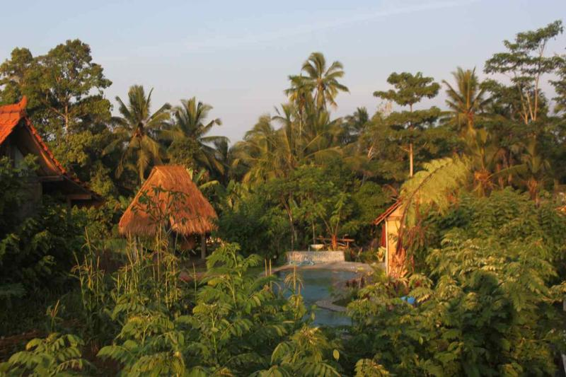 View as you arrive on the property, looking west to the jungle - Hati Suci: Krisna House rustic luxury - Ubud - rentals