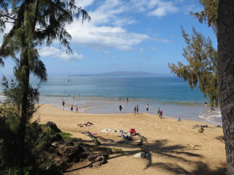 Charley Young Beach - across the street -  with gentle waves -- you'll love it! - Affordable Beachlovers Paradise condo - near beach - Kihei - rentals