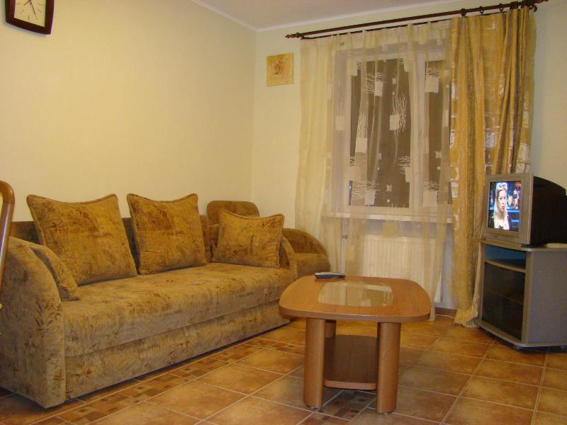 apartment near the stadium Donbass Arena - Image 1 - Donetsk - rentals