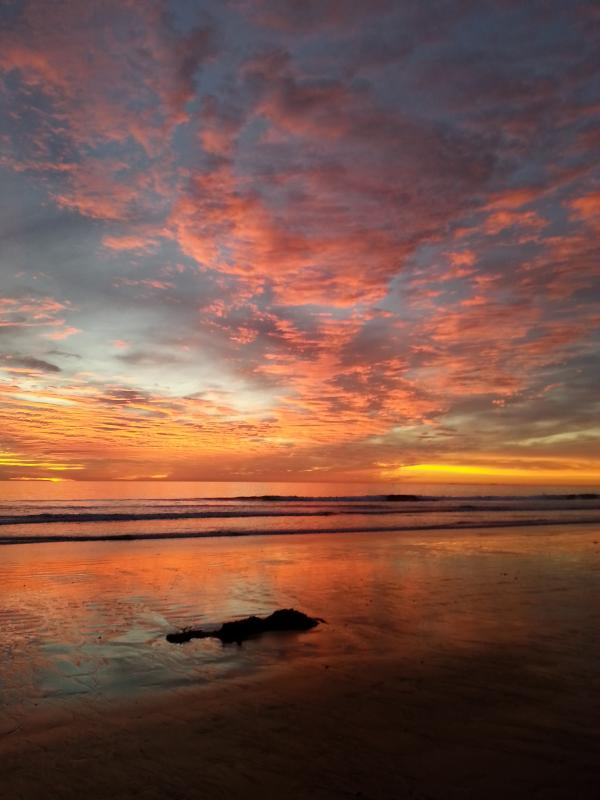 low tide at the beach at sunset - oceanside beach rentals - Oceanside - rentals