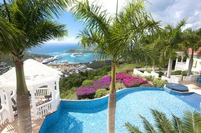 Scenic 4 Bedroom Villa with Harbour View on St. Thomas - Image 1 - Saint Thomas - rentals