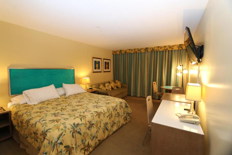 Studio with King bed and sofa bed - Aqua Palms / Free Parking & WiFi / Close to Beach - Honolulu - rentals