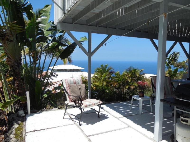 Sunny private pato perfect for BBQing, gas grill included - South Kona Studio, 2 mins from beach - Honaunau - rentals