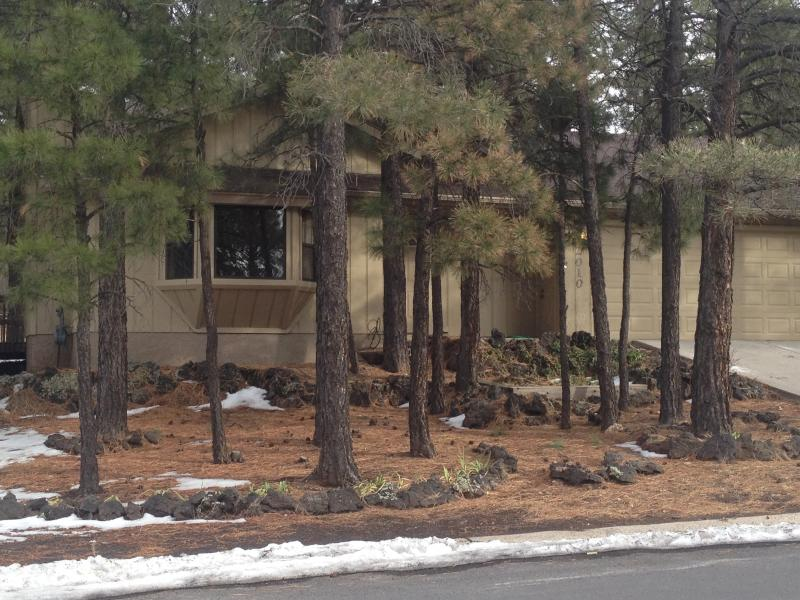 Street view - Cozy home in beautiful Flagstaff, Arizona - Flagstaff - rentals