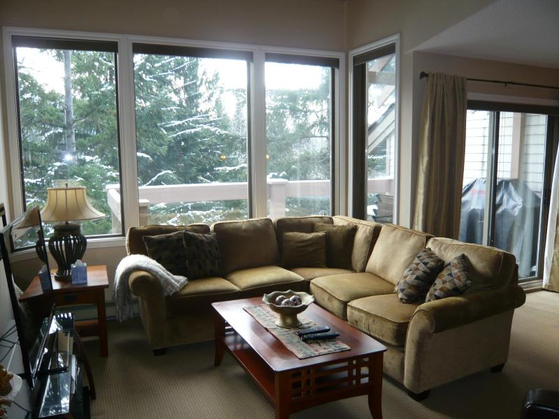 Look out onto forested pathways - Close to Village Gate Blvd, easy walk into town. - Whistler - rentals