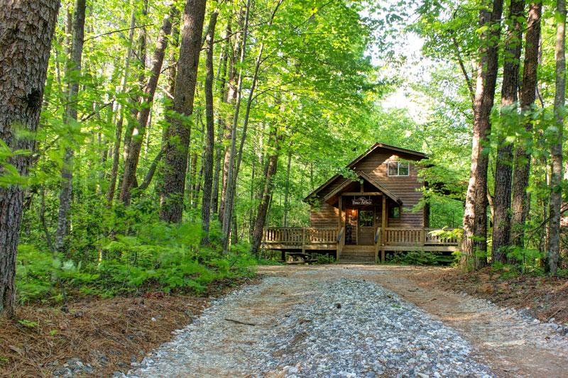 The Bear Affair - Private & Secluded  - Wifi provided! - Image 1 - Helen - rentals