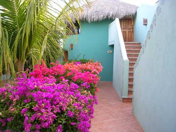 Casita Hibiscus  - Las Palmas Tropicales Beachfront Rentals overlooking the San Pedrito surf break. - El Pescadero - rentals