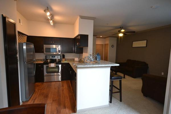 Great 1 BD in Afton Oaks2MC321123206 - Image 1 - Houston - rentals