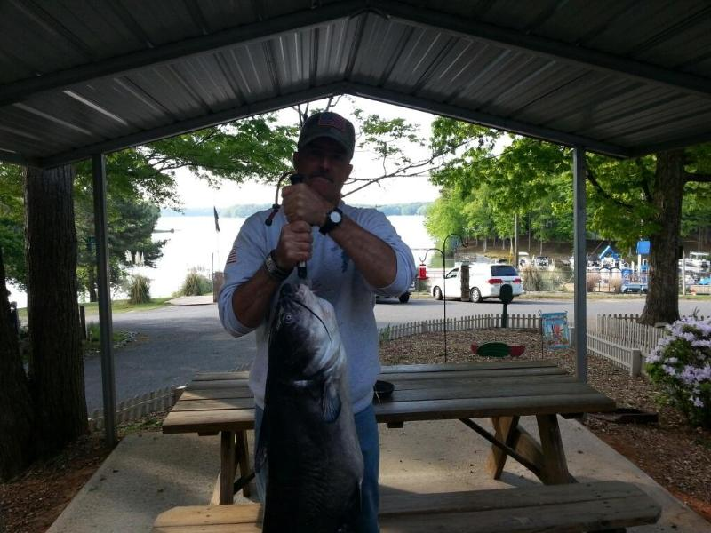 BIG FISH CAUGHT IN 60 FEET WATER OFF PONTOON - ****Lake Gaston Retreat** Includes Pontoon on site 24feet ***PETS OK* MUST BE EXPER. BOATER - Bracey - rentals