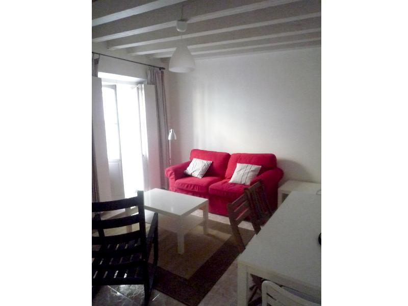 Rental in summer € 320/ week,  € 50/night , flirty flat with WIFI with 2 rooms, perfect for couples with child - Image 1 - Cadiz - rentals
