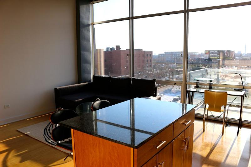 Loft Apartment South Loop on Michigan Ave - Image 1 - Chicago - rentals