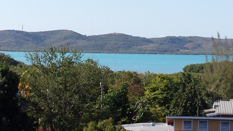 View of the Bay - House close to town and beaches - Woodston - rentals