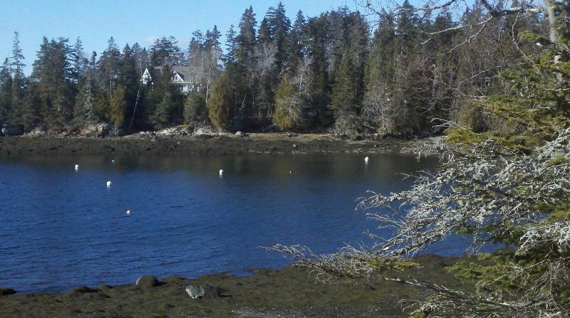 Seal Harbor & Fish Hawk @ Point - 3BR waterfront home, Island of Islesboro, ME - Islesboro - rentals