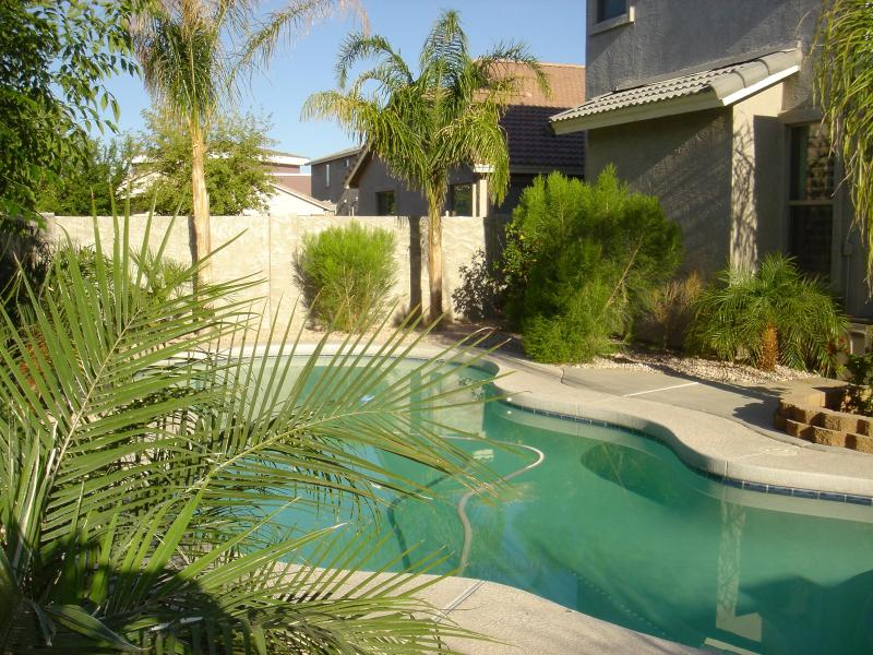 Private heated pool in the backyard - Luxury European villa with heated pool - close to Superbowl 2015 - Surprise - rentals